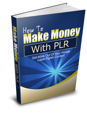 image of how to use plr book