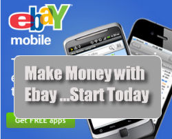 ebay plr package