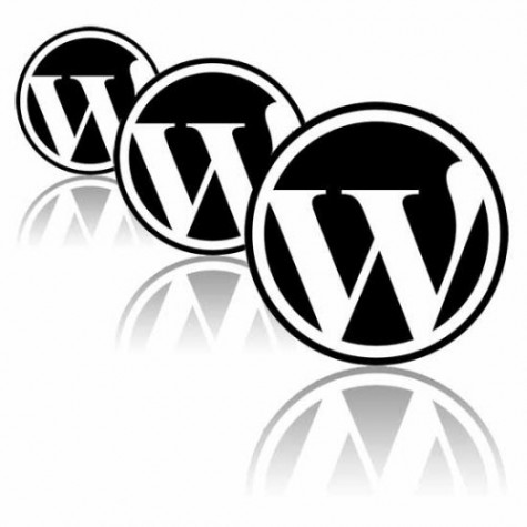 image of favorite wordpress themes