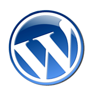 image for improve your wordpress seo