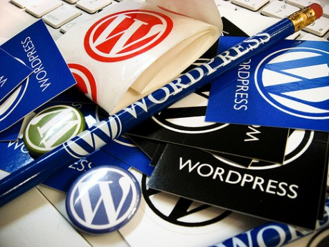 using wordpress software